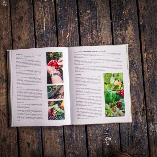 Der geniale Gemüsegarten - Buchansicht 3126