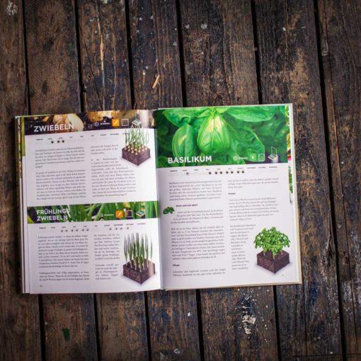 Der geniale Gemüsegarten - Buchansicht 3127