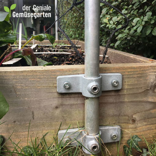 Kletterspalier_dergenialegemuesegarten_02