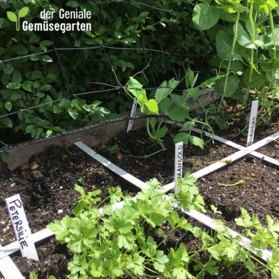 der-geniale-gemuesegarten-einleger-kurz Produktbild